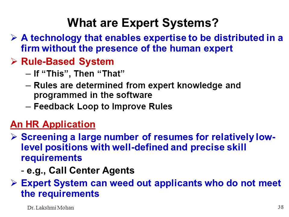 What are Expert Systems