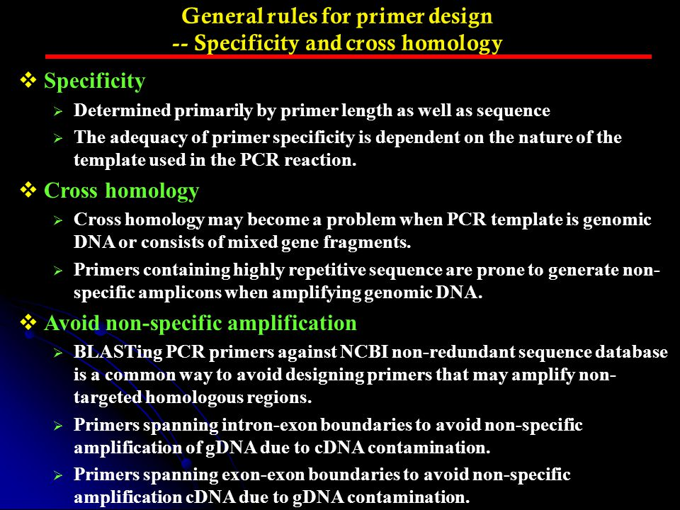 General rules for primer design -- Specificity and cross homology