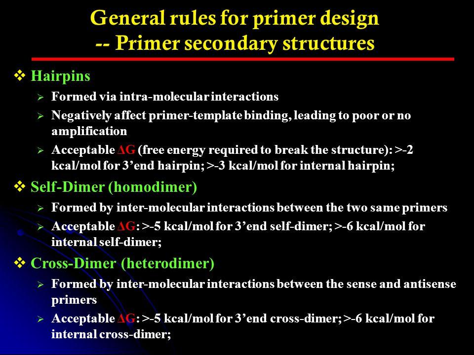 General rules for primer design -- Primer secondary structures