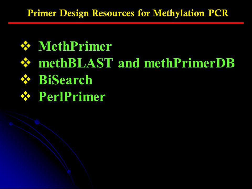 methBLAST and methPrimerDB BiSearch PerlPrimer
