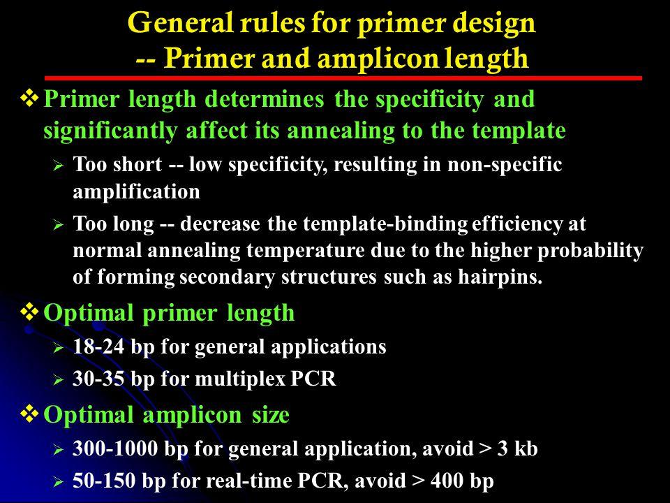 General rules for primer design -- Primer and amplicon length
