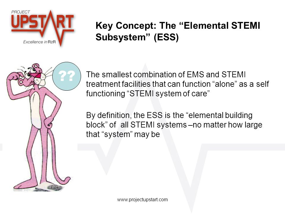 Key Concept: The Elemental STEMI Subsystem (ESS)
