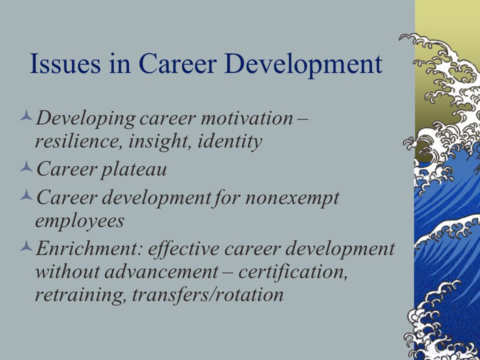 Issues in Career Development