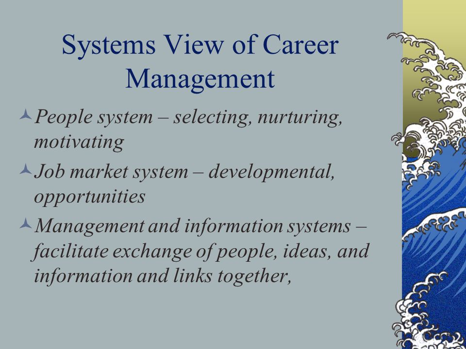 Systems View of Career Management