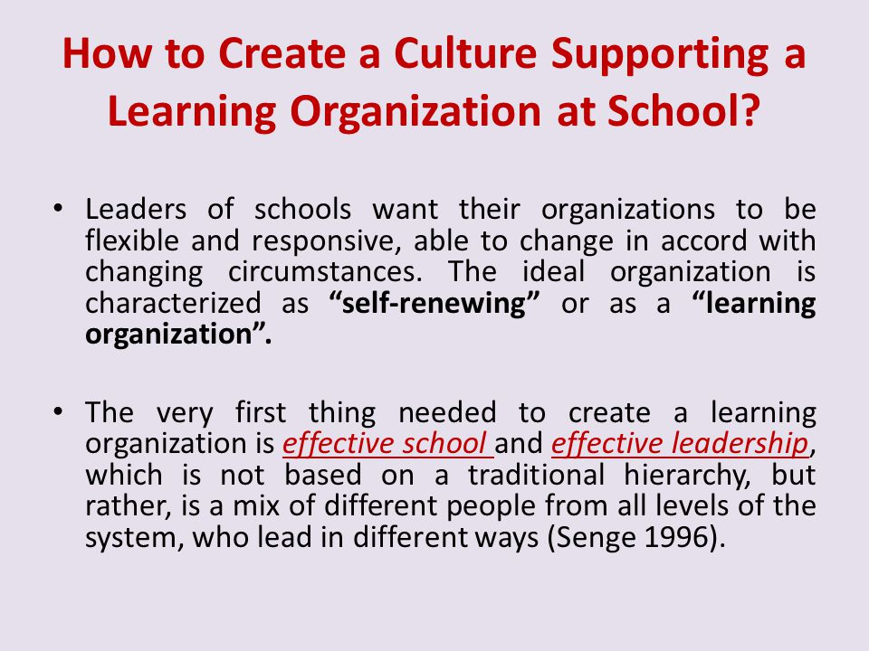 How to Create a Culture Supporting a Learning Organization at School