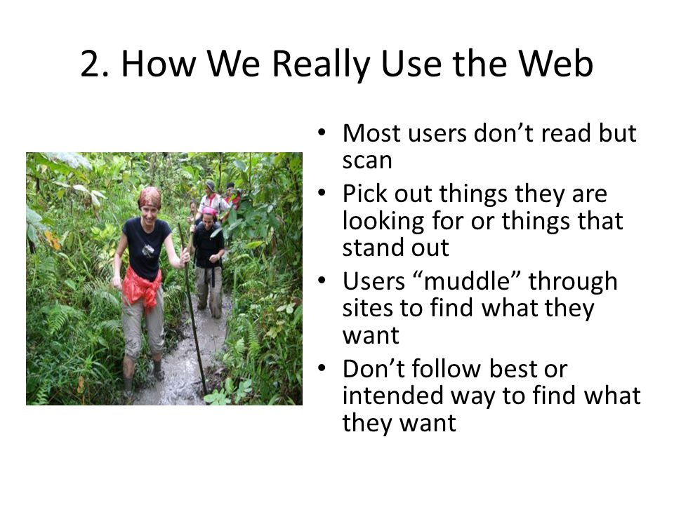 2. How We Really Use the Web
