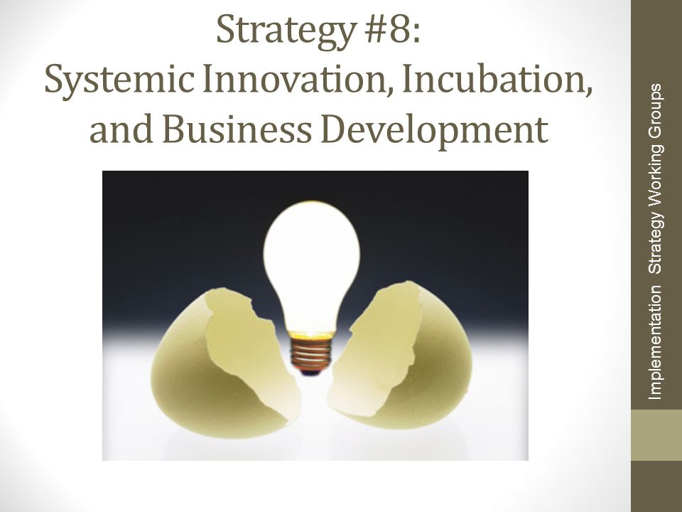 Strategy #8: Systemic Innovation, Incubation, and Business Development