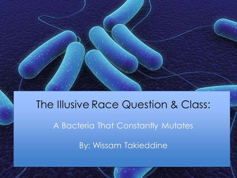 The Illusive Race Question & Class: A Bacteria That Constantly Mutates By: Wissam Takieddine
