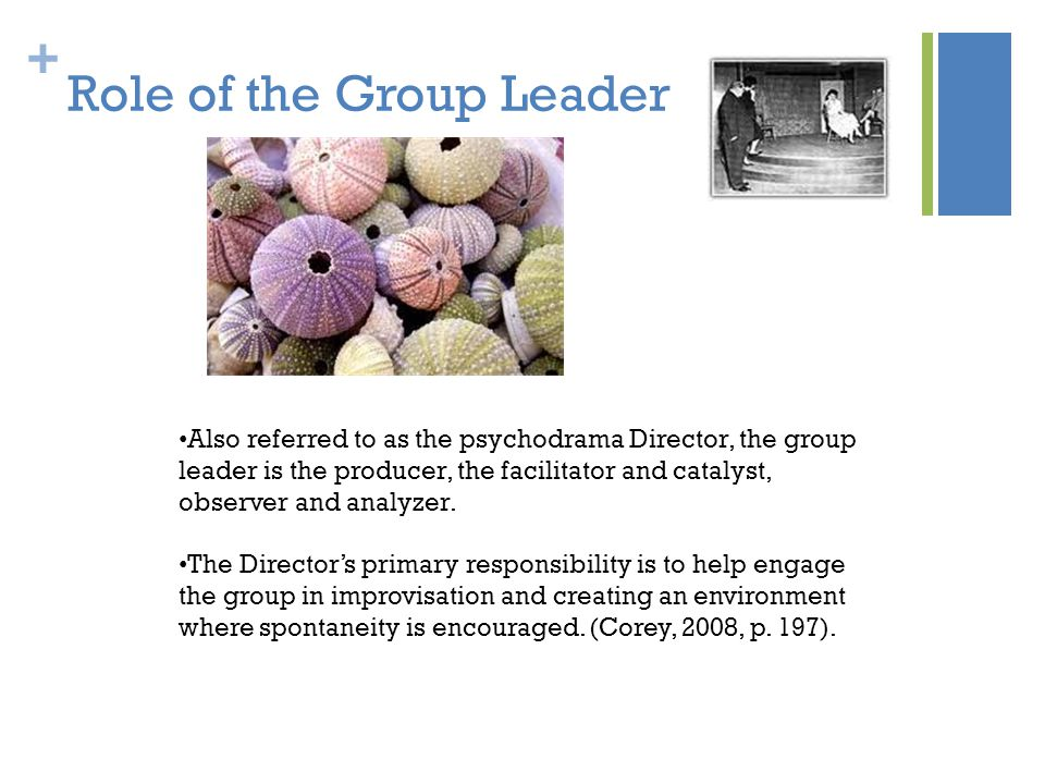 Role of the Group Leader