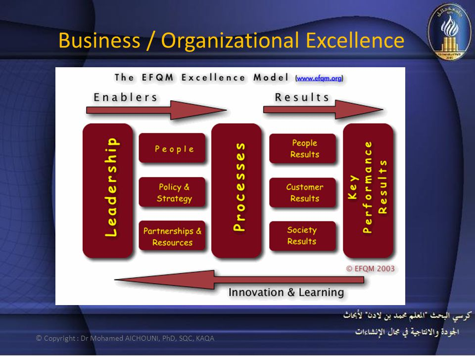 Business / Organizational Excellence