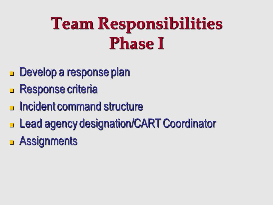 Team Responsibilities Phase I