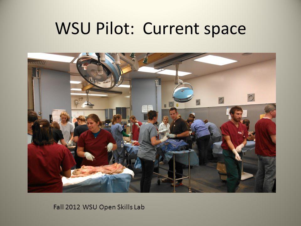 WSU Pilot: Current space