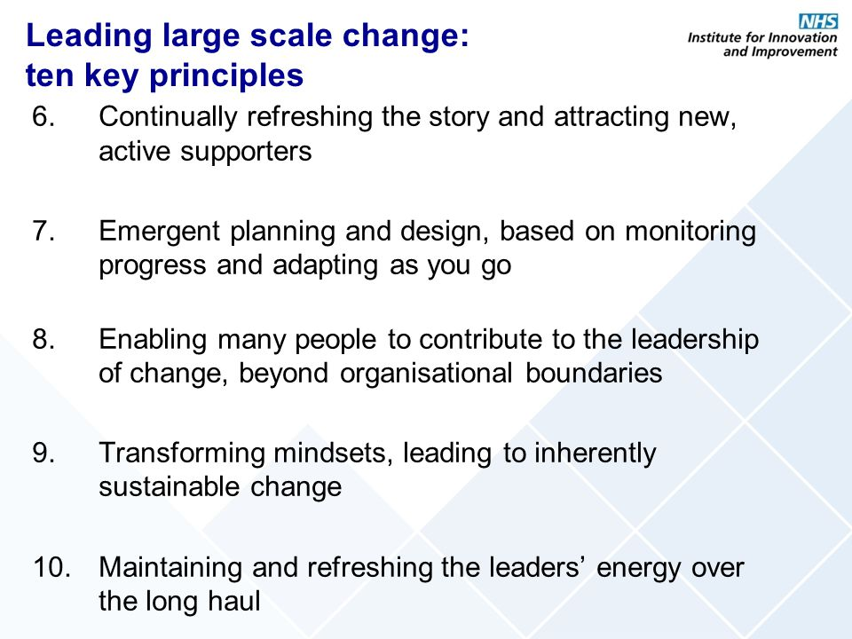 Leading large scale change: ten key principles