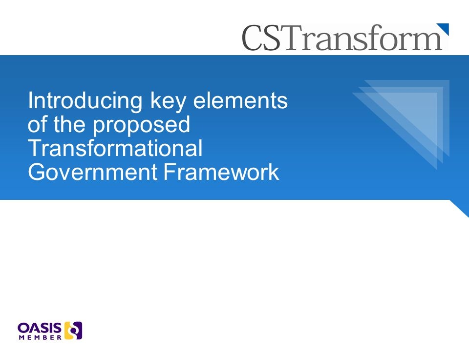 Introducing key elements of the proposed Transformational Government Framework