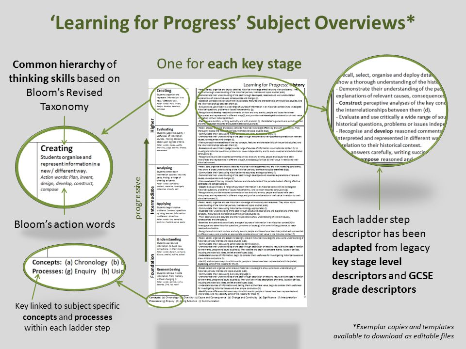 'Learning for Progress' Subject Overviews*