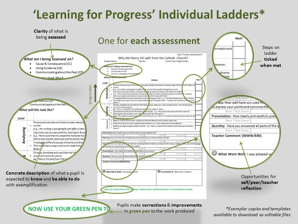 'Learning for Progress' Individual Ladders*