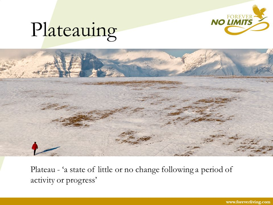 Plateauing Plateau - 'a state of little or no change following a period of activity or progress'