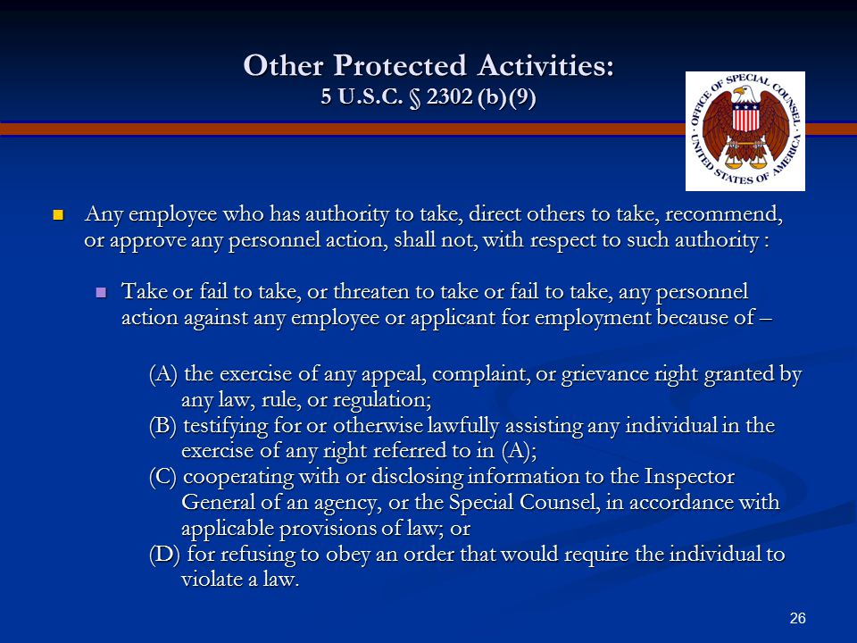 Other Protected Activities: 5 U.S.C. § 2302 (b)(9)