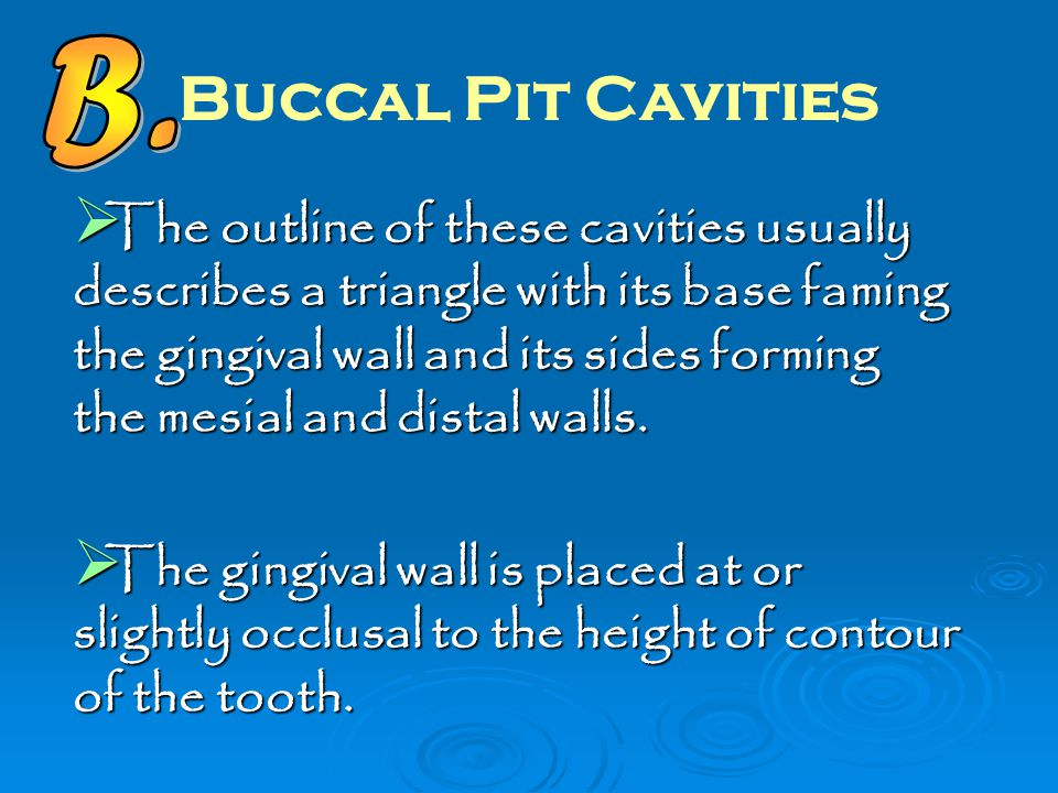 B. Buccal Pit Cavities.
