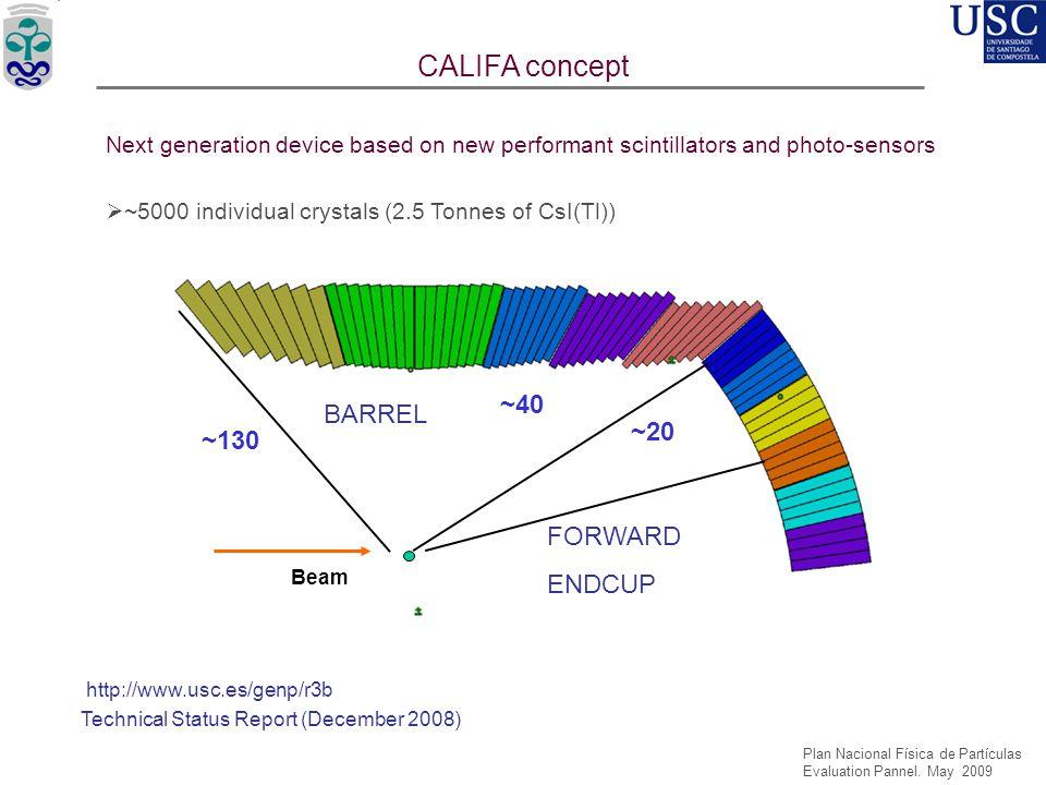 CALIFA concept ~40 BARREL ~20 ~130 FORWARD ENDCUP