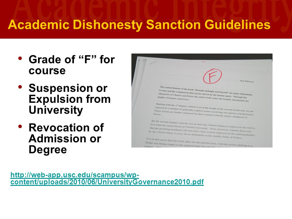 Academic Dishonesty Sanction Guidelines