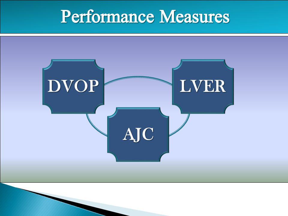 Performance Measures DVOP LVER AJC