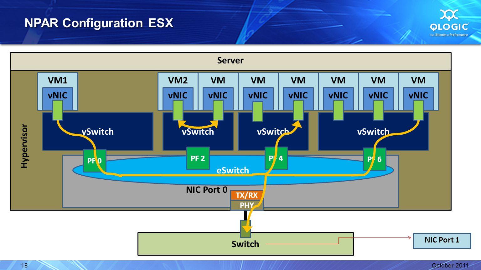 NPAR Configuration ESX