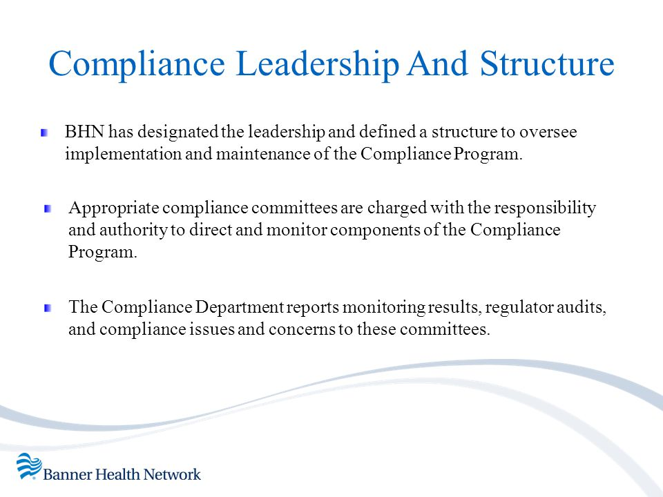 Compliance Leadership And Structure