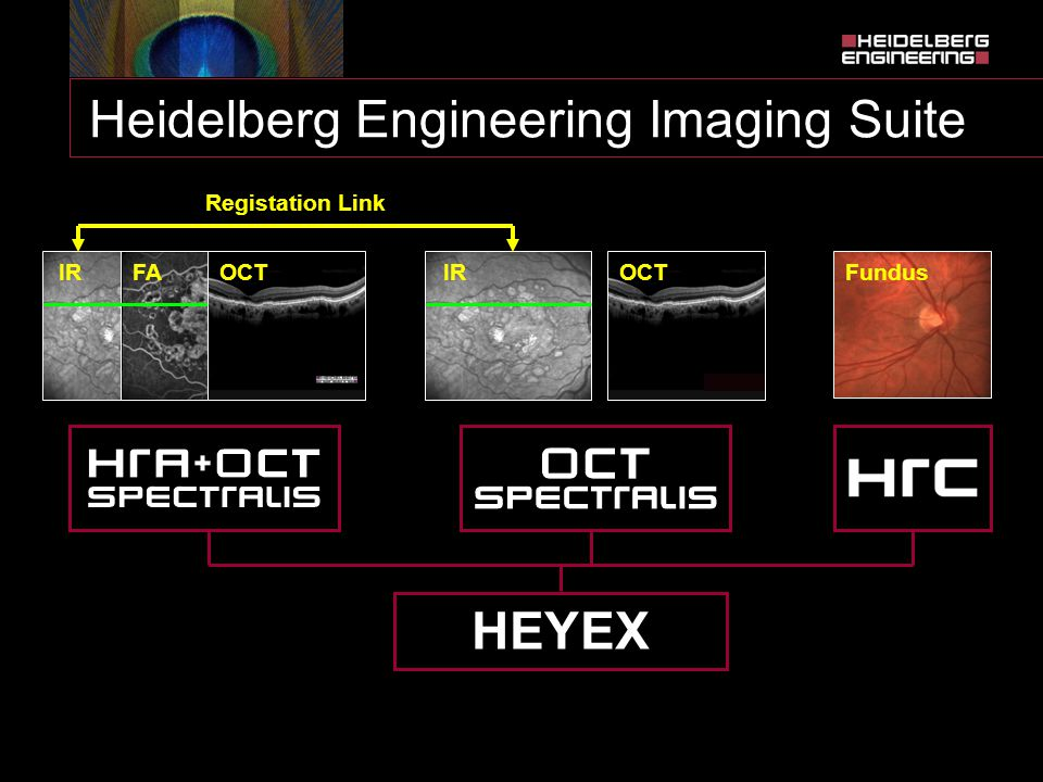Heidelberg Engineering Imaging Suite