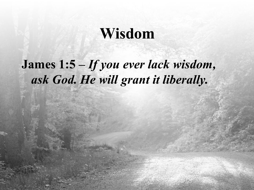 Wisdom James 1:5 – If you ever lack wisdom, ask God. He will grant it liberally.