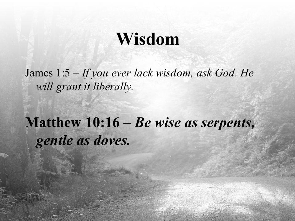 Wisdom Matthew 10:16 – Be wise as serpents, gentle as doves.