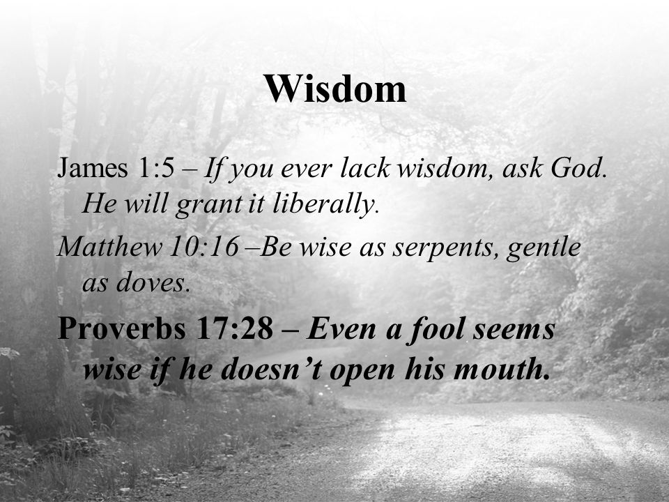 Wisdom James 1:5 – If you ever lack wisdom, ask God. He will grant it liberally. Matthew 10:16 –Be wise as serpents, gentle as doves.