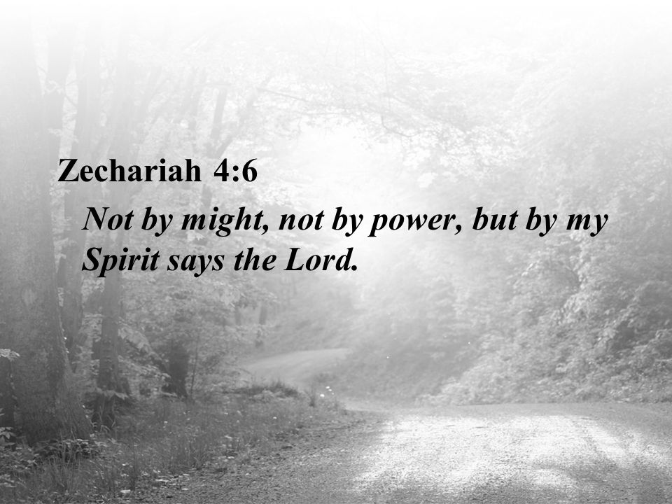 Zechariah 4:6 Not by might, not by power, but by my Spirit says the Lord.
