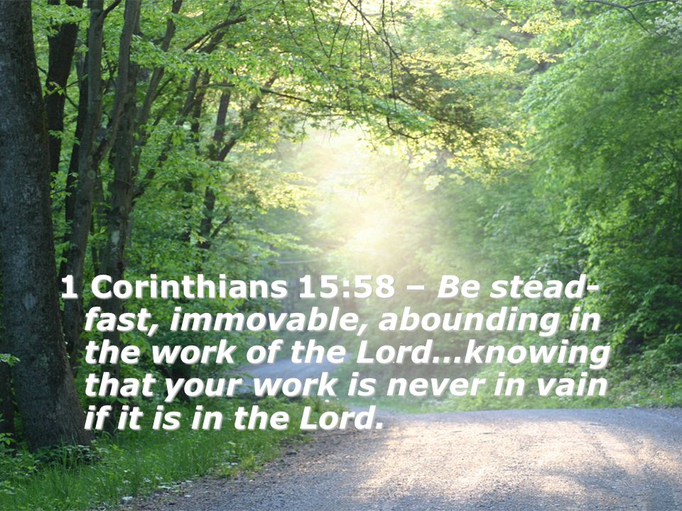1 Corinthians 15:58 – Be stead-fast, immovable, abounding in the work of the Lord…knowing that your work is never in vain if it is in the Lord.