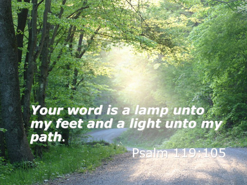 Your word is a lamp unto my feet and a light unto my path.