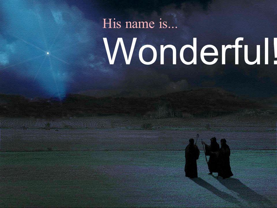 His name is... Wonderful!
