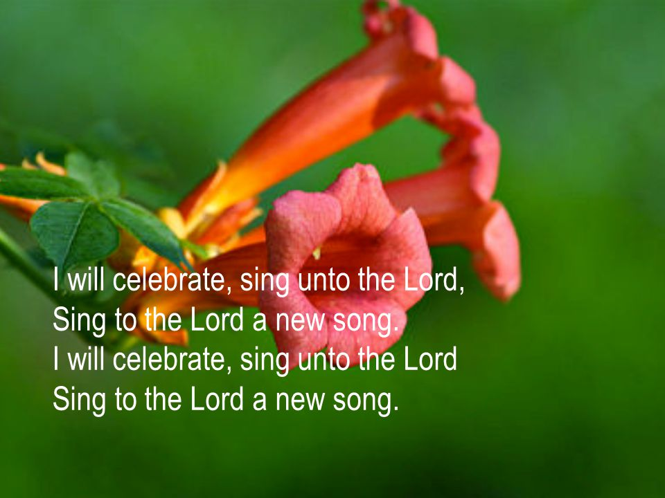 I will celebrate, sing unto the Lord, Sing to the Lord a new song