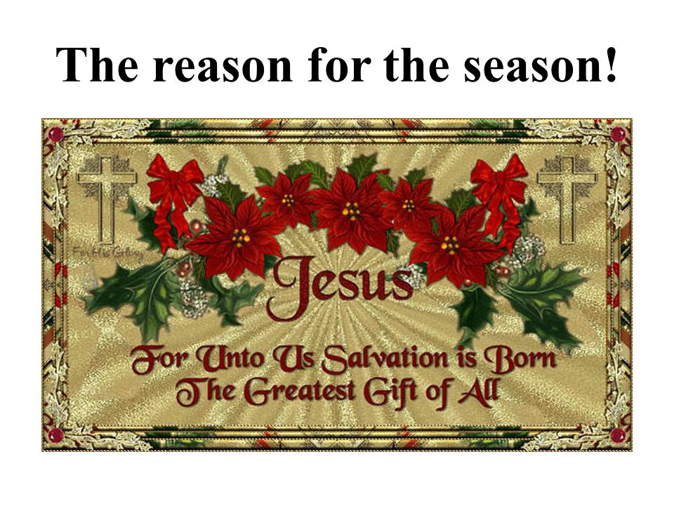 The reason for the season!