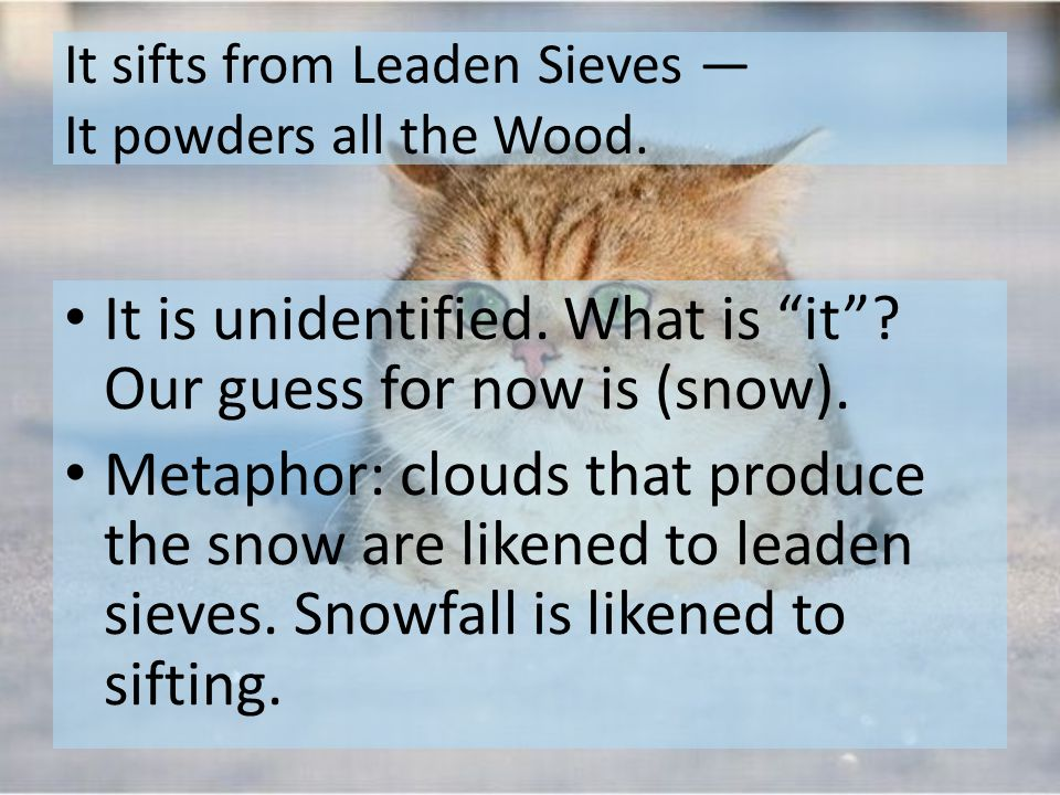It sifts from Leaden Sieves — It powders all the Wood.