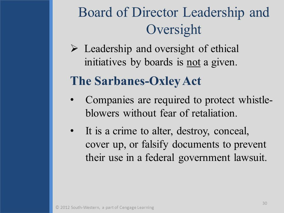 Board of Director Leadership and Oversight