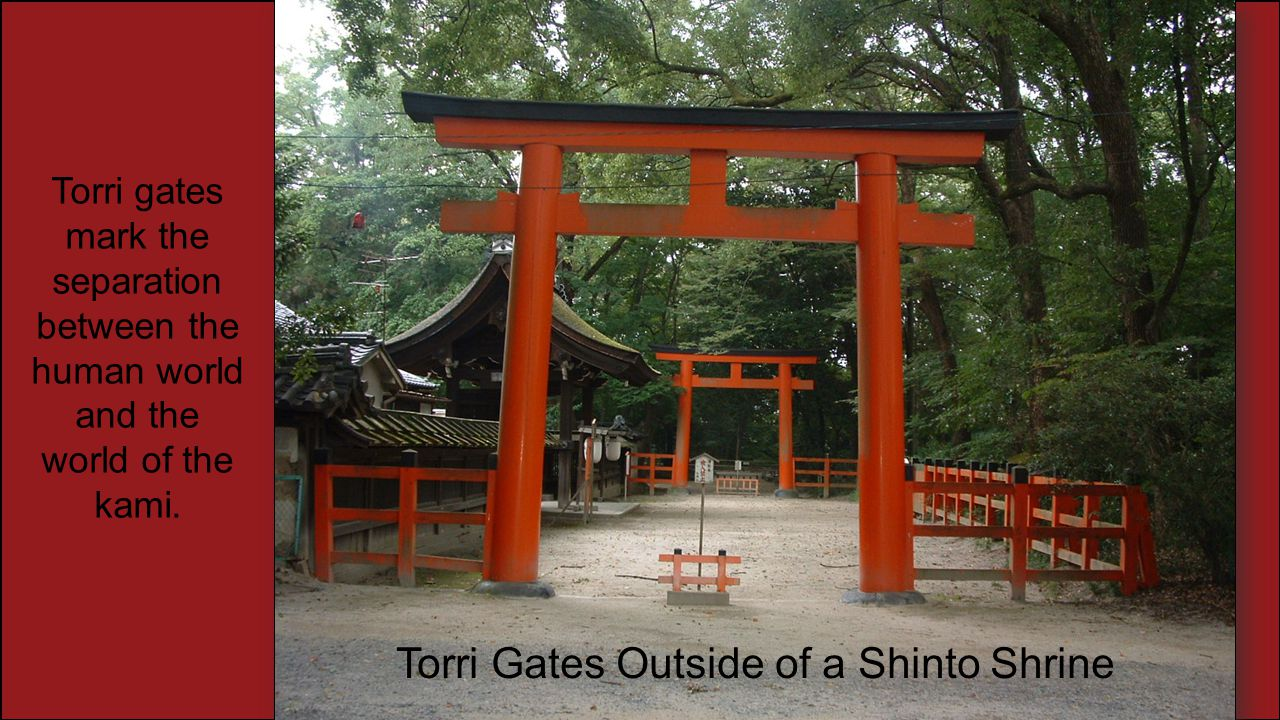 Torri Gates Outside of a Shinto Shrine