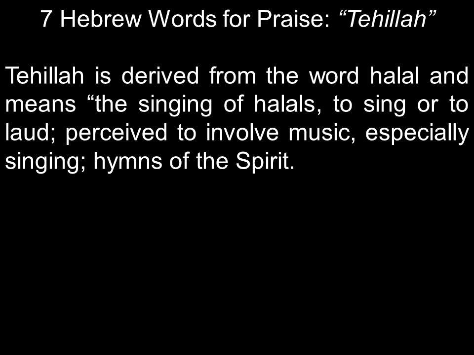 7 Hebrew Words for Praise: Tehillah