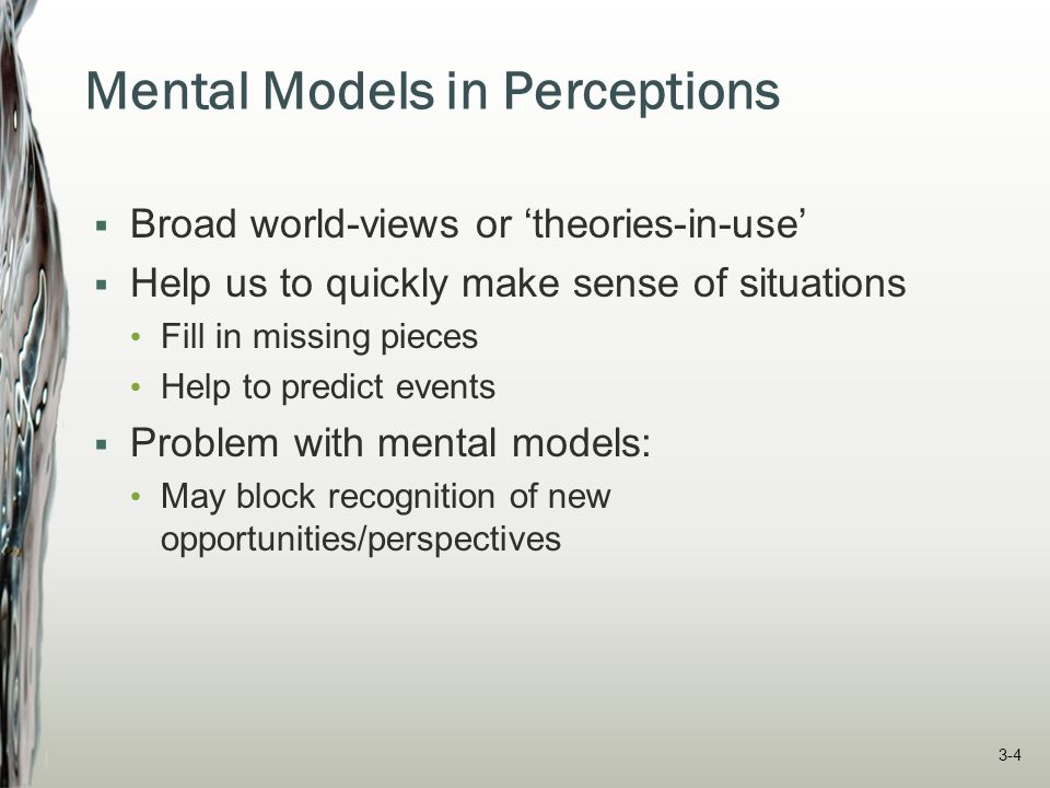 Mental Models in Perceptions