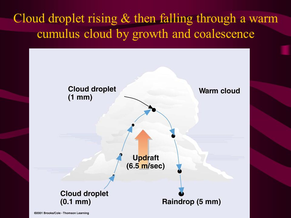 Cloud droplet rising & then falling through a warm cumulus cloud by growth and coalescence