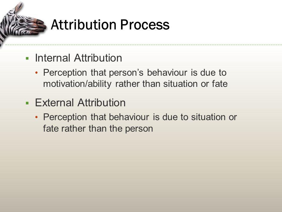 Attribution Process Internal Attribution External Attribution