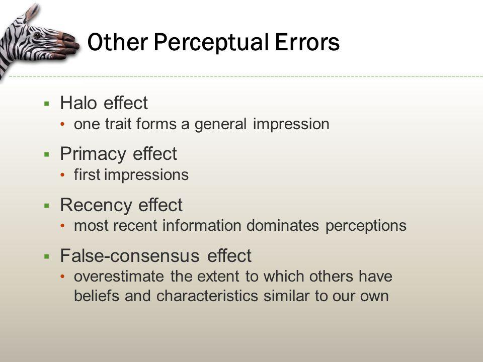 Other Perceptual Errors