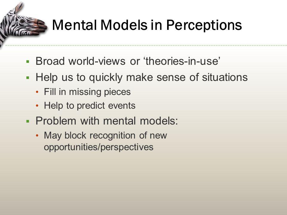 Mental Models in Perceptions