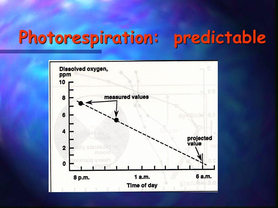 Photorespiration: predictable