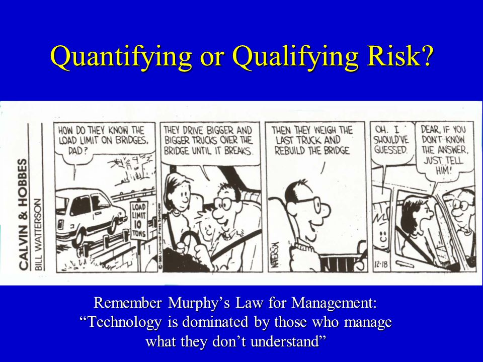 Quantifying or Qualifying Risk