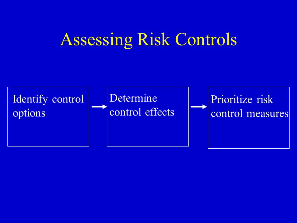 Assessing Risk Controls